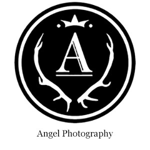 Link to Angel Photography Webpage